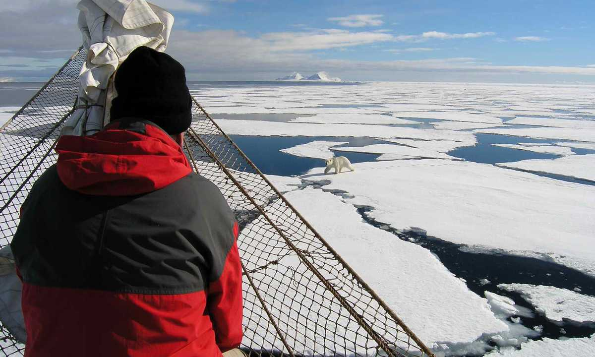 OCE_3_Jan-Belgers_RTD_Noorderlicht-Polar-Bear-spotting