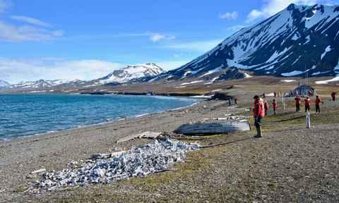Arctic Travel August 2017