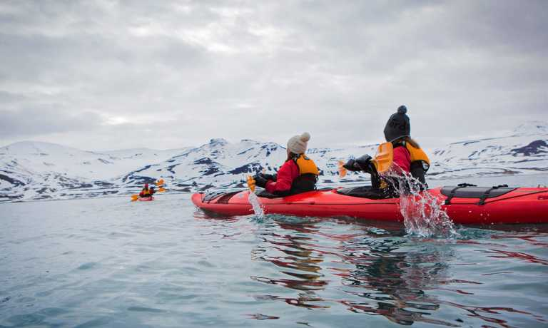 Svalbard Wildlife Safari