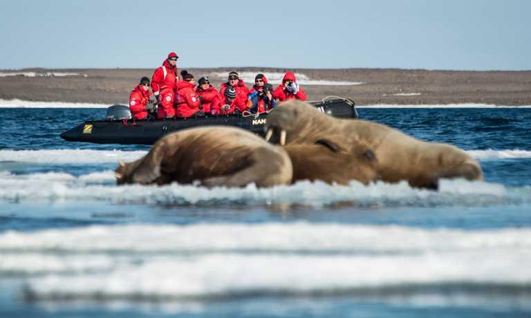 Three Islands Adventure: Iceland to Svalbard